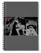 Testament Spiral Notebook