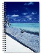 Tetiaroa Driftwood Spiral Notebook