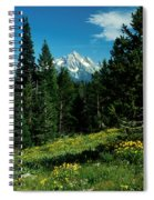 Teton Meadow Spiral Notebook