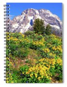Teton Spring In The Valley Spiral Notebook