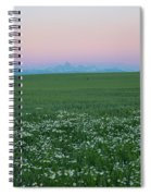 Tetons With Daisies Spiral Notebook