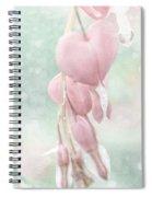 Teulu Spiral Notebook