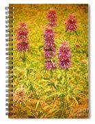 Texas Beebalm  Spiral Notebook