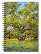Texas Bluebonnets Under A Giant Oak Tree Spiral Notebook