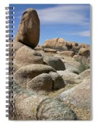 Texas Canyon Spiral Notebook