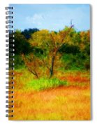 Texas Landscape 102310 Spiral Notebook