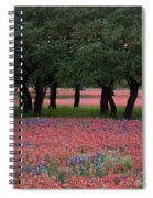 Texas Live Oaks Surrounded By A Field Of Indian Paintbrush And Bluebonnets Spiral Notebook