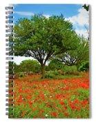 Texas Poppy Field 159 Spiral Notebook