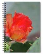 Texas Pricklypear Spiral Notebook