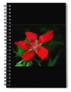 Texas Star Spiral Notebook
