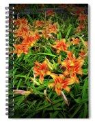 Texture Drama Field Of Tiger Lilies Spiral Notebook
