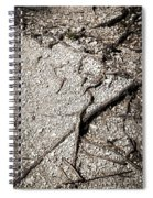 Texture With Root With Plenty Of Pebbles Spiral Notebook