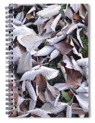 Texture103 Spiral Notebook
