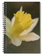 Textured Daffodil Spiral Notebook