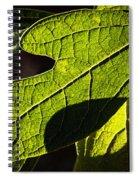 Textured Glow Spiral Notebook