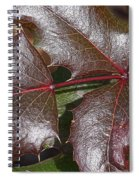 Textured Leaves Spiral Notebook
