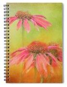 Textured Orange Daisies Spiral Notebook