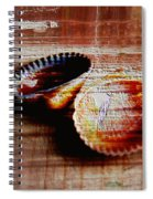 Textured Shells Spiral Notebook