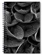 Textures And Tones Spiral Notebook