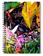 Textures Spiral Notebook