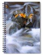 Textures Of Autumn Spiral Notebook