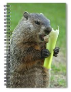 Thanks You For Growing A Garden Spiral Notebook
