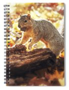 Thanksgiving Feast Spiral Notebook