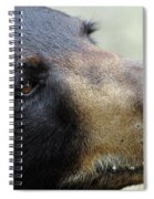 That Face Spiral Notebook