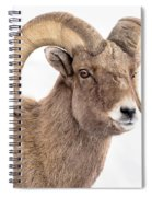 That Handsome Ram Spiral Notebook