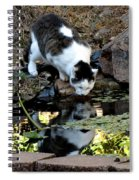 That My Reflection Spiral Notebook