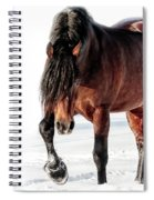 That Sultry Look Spiral Notebook