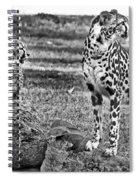 Thats A Yawn Spiral Notebook