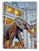 The African Bush Elephant In The Rotunda Of The National Museum Of Natural History Spiral Notebook