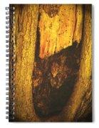 The African Queen Spiral Notebook