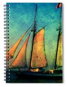 The America Nr 2 Spiral Notebook