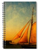 The America Nr 3 Spiral Notebook