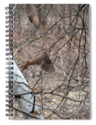 The American Woodcock In Take-off Flight Spiral Notebook