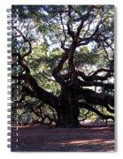 The Angel Oak In Charleston Sc Spiral Notebook