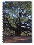 The Angel Oak In Spring Spiral Notebook