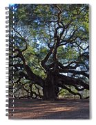The Angel Oak In Spring Spiral Notebook