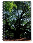 The Angel Oak In Summer Spiral Notebook