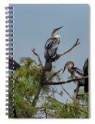 The Anhinga Perch Spiral Notebook