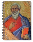 The Apostle Matthew 1311 Spiral Notebook