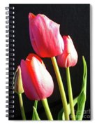 The Appearance Of Spring - Tulips Spiral Notebook