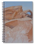 The Arch Rock Experiment - Vi Spiral Notebook