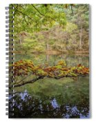 The Arsenic Lake Devon Great Consols Spiral Notebook