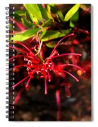 The Art Of Spider Flower Spiral Notebook