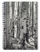 The Aspen Forest In Black And White  Spiral Notebook