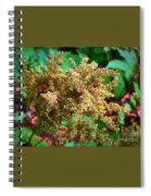 The Astible After The Bloom Spiral Notebook