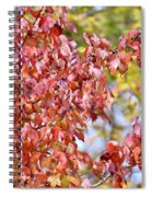 The Autumn Leaves Spiral Notebook